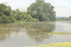 ​​​The Meuse River water quality report highlights the importance of a broad approach towards water quality